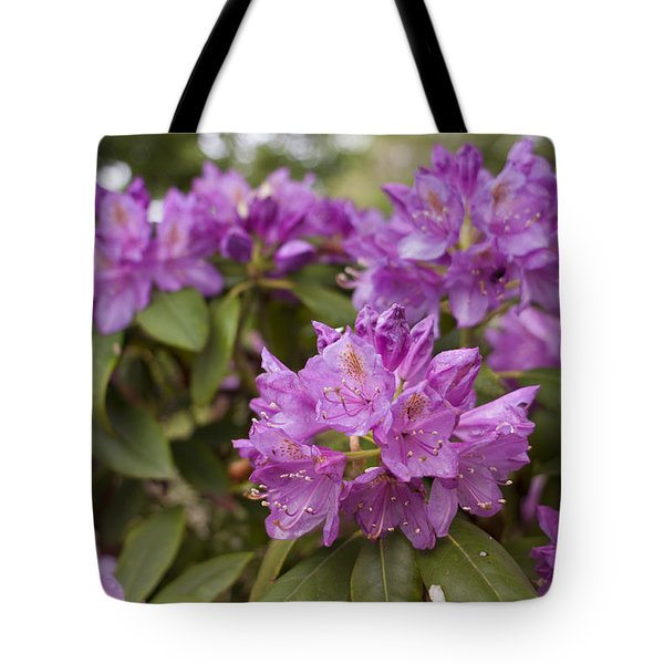 Tote Bag featuring the photograph Garden's Welcome by Miguel Winterpacht