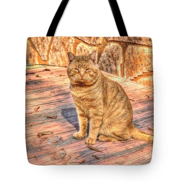 Garfield 01 Tote Bag