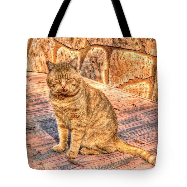 Garfield 02 Tote Bag