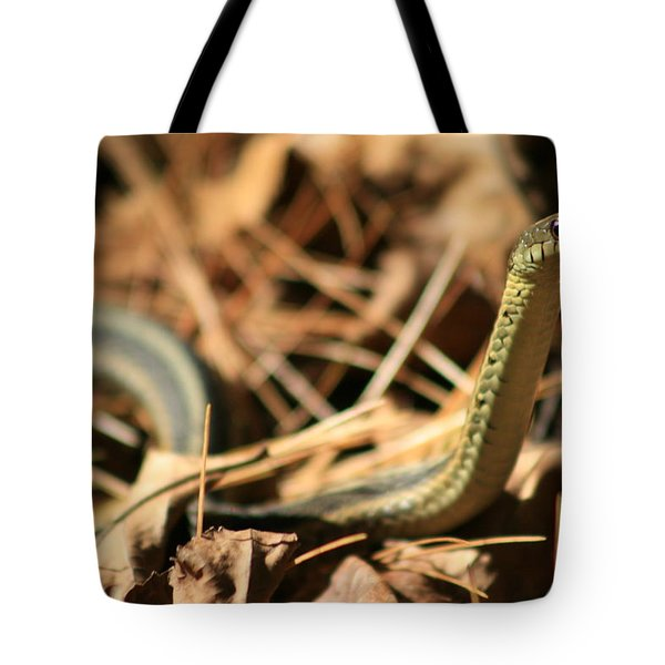 Garter View Tote Bag