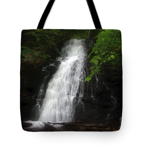 Tote Bag featuring the photograph Garvey Spring Falls by Debra Fedchin