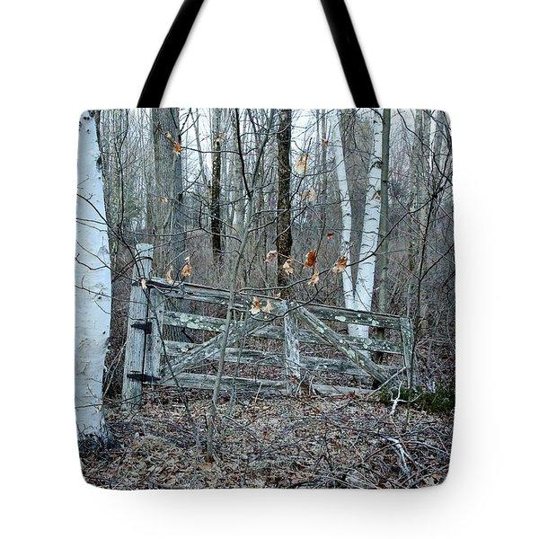 Gate And Birches Tote Bag by Randi Shenkman