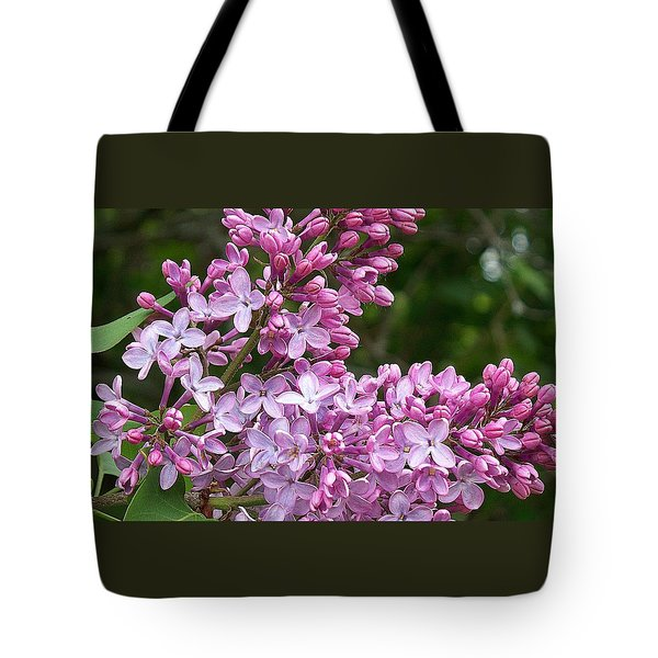 Tote Bag featuring the photograph Gathering Lilacs by Joy Nichols