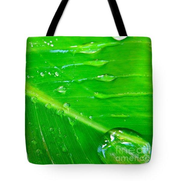 Gathering Rain Tote Bag