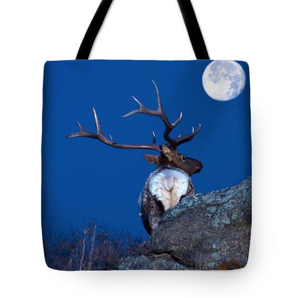 Gazing At The Moon Tote Bag