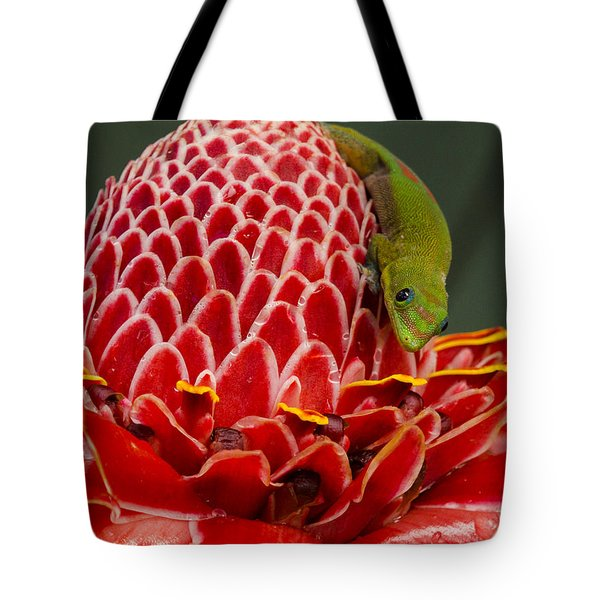 Gecko On Red Ginger Tote Bag