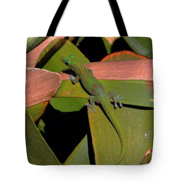 Gecko Tote Bag by Pamela Walton