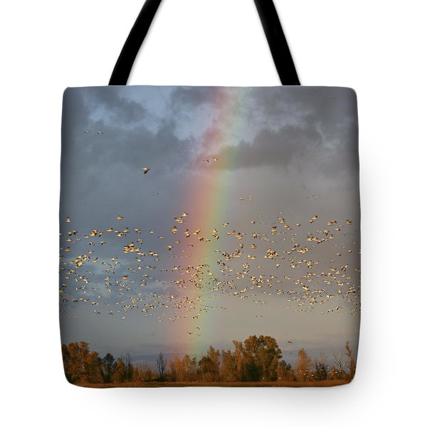 Geese And Rainbow Tote Bag
