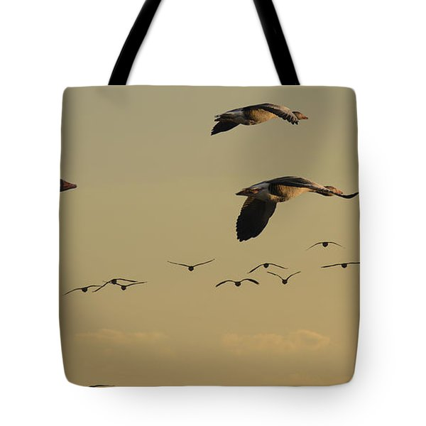 Geese Charter Tote Bag