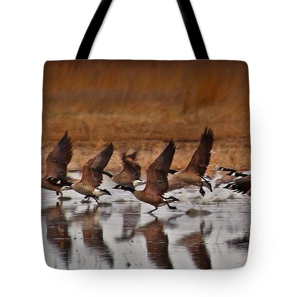 Tote Bag featuring the photograph Geese On The Run by Lynn Hopwood
