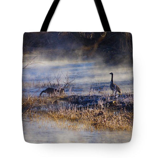 Geese Taking A Break Tote Bag