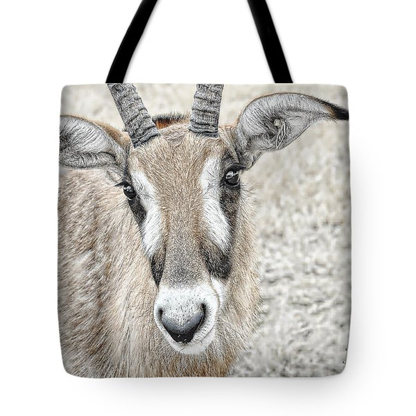 Tote Bag featuring the photograph Young Oryx by Dyle   Warren