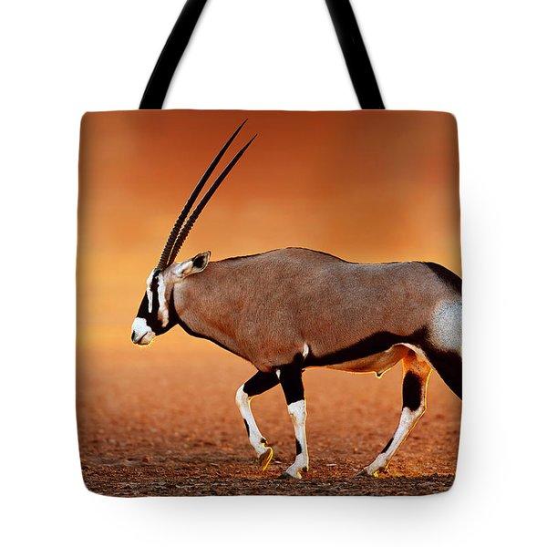 Gemsbok On Desert Plains At Sunset Tote Bag