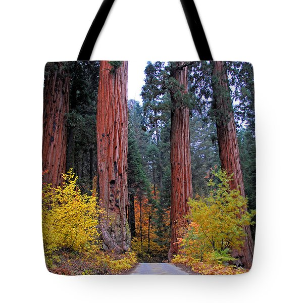 Tote Bag featuring the photograph General's Highway by Lynn Bauer