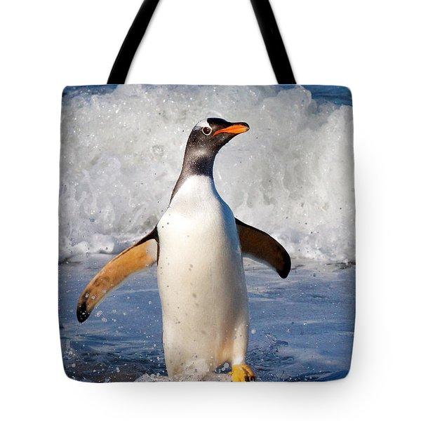 Gentoo Ashore Tote Bag