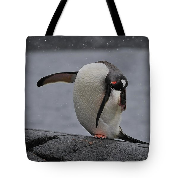 Gentoo Yoga Tote Bag by Tony Beck