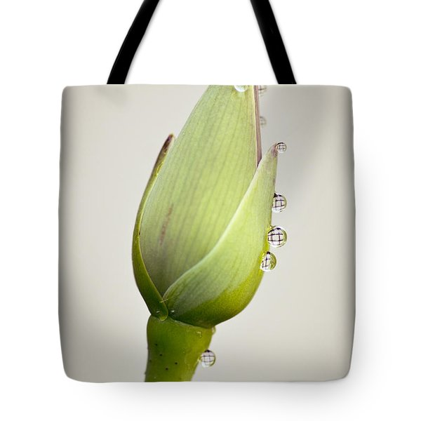 Tote Bag featuring the photograph Geometric Drops by Priya Ghose