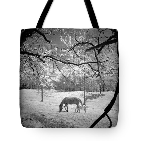 Georgia Horses Tote Bag