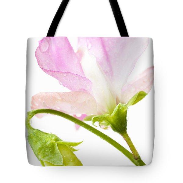 Geranium Pink Tote Bag by Anne Gilbert