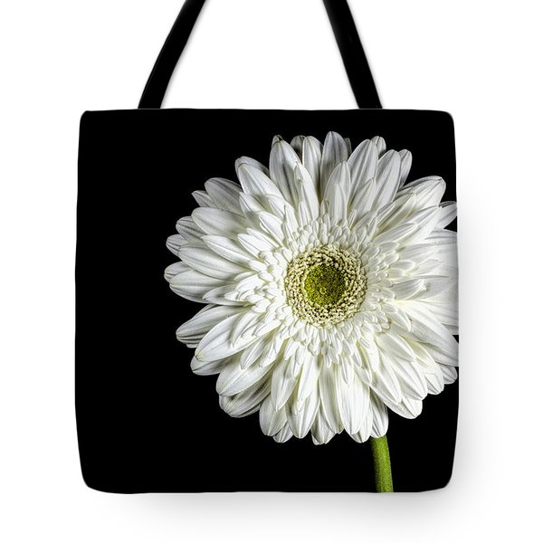 Gerber Daisy Tote Bag by John Crothers