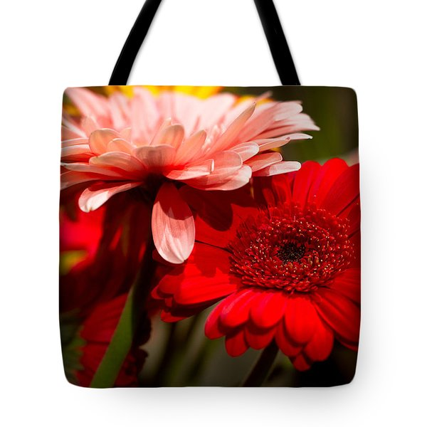 Tote Bag featuring the photograph Gerbera Daisies by Patrice Zinck