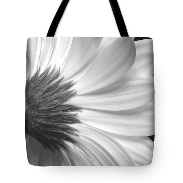 Gerbera Daisy Monochrome Tote Bag by Jeannie Rhode