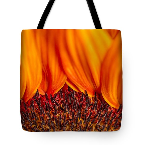 Tote Bag featuring the photograph Gerbera On Fire by Adam Romanowicz