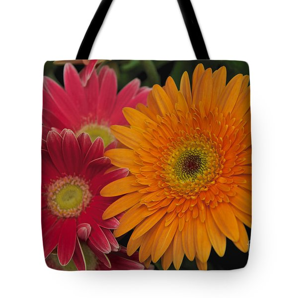 Tote Bag featuring the photograph Gerbera by William Norton
