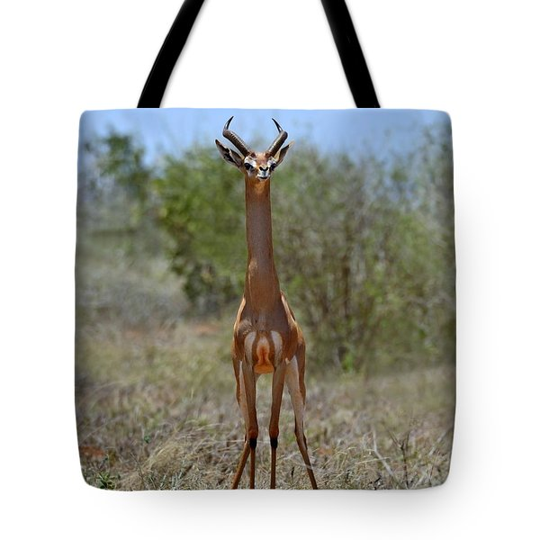 Gerenuk Tote Bag by Tony Beck