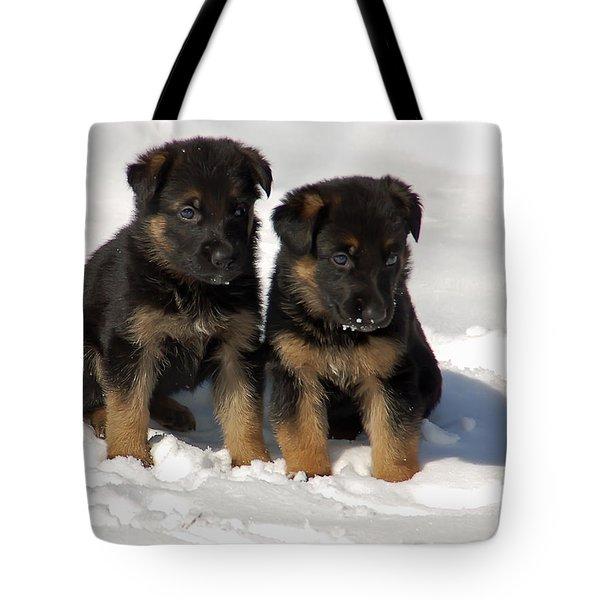 German Shepherd Pups Tote Bag by Aimee L Maher Photography and Art Visit ALMGallerydotcom