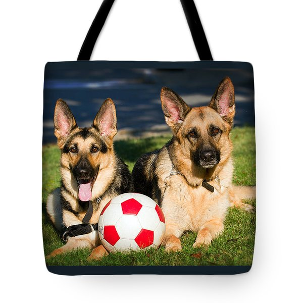 Tote Bag featuring the photograph German Shepherd Sisters by Eleanor Abramson