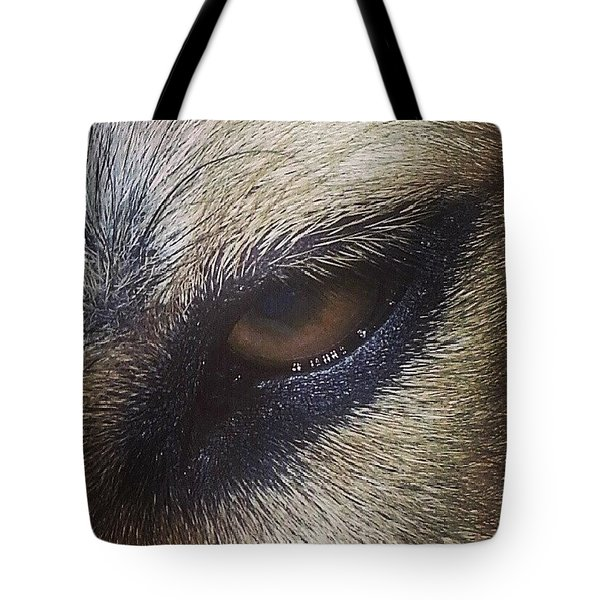 Eye Of The Dog Tote Bag