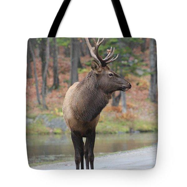 Get My Good Side Tote Bag