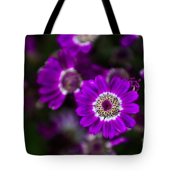 Getting Noticed Tote Bag by Syed Aqueel
