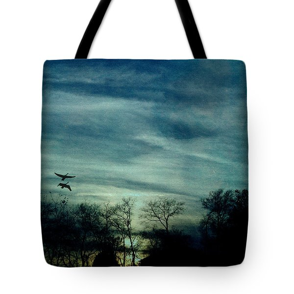 Tote Bag featuring the photograph Getting Ready For The Night by Ericamaxine Price