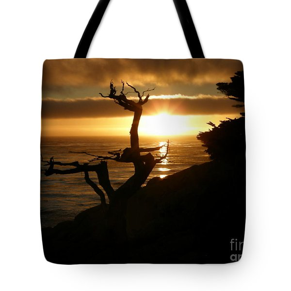 Ghost Tree At Sunset Tote Bag