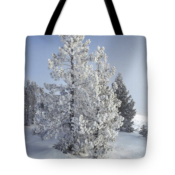 Ghost Trees Of Yellowstone Tote Bag by Sandra Bronstein