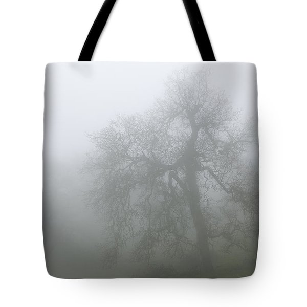 Tote Bag featuring the photograph Ghostly Oak In Fog - Central California by Ram Vasudev
