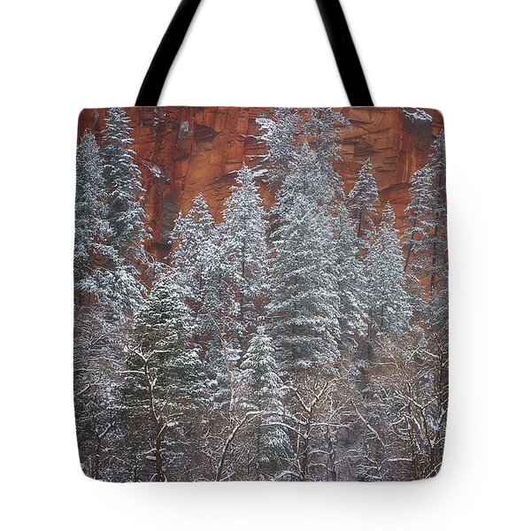 Ghosts Of Winter Tote Bag by Peter Coskun