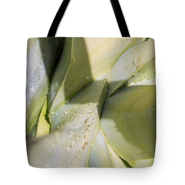Giant Agave Abstract 3 Tote Bag