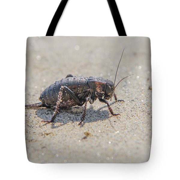 Tote Bag featuring the photograph Giant Bradyporid Bushcricket - Bradyporus Dasypus by Jivko Nakev