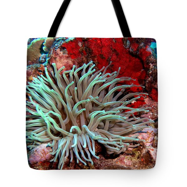 Giant Green Sea Anemone Against Red Coral Tote Bag