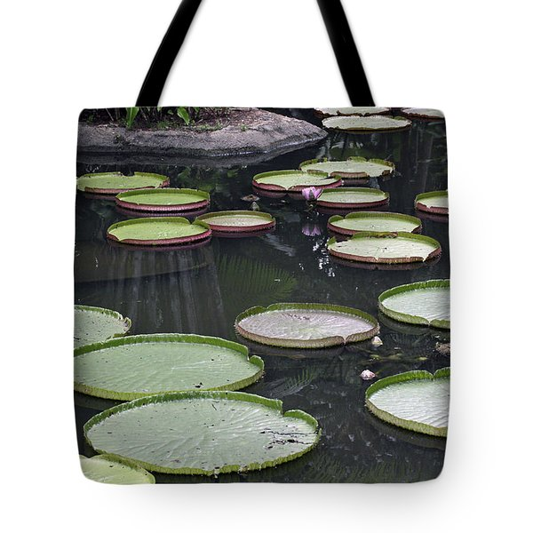 Tote Bag featuring the photograph Giant Lily Pads by Shoal Hollingsworth