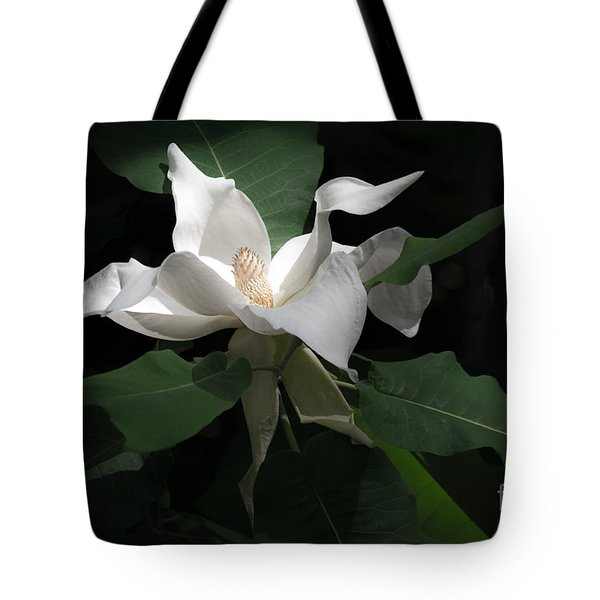 Giant Magnolia Tote Bag