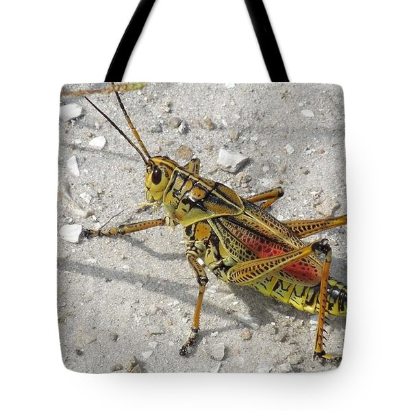 Tote Bag featuring the photograph Giant Orange Grasshopper by Ron Davidson