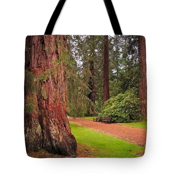 Giant Sequoia Or Redwood. Benmore Botanical Garden. Scotland Tote Bag by Jenny Rainbow