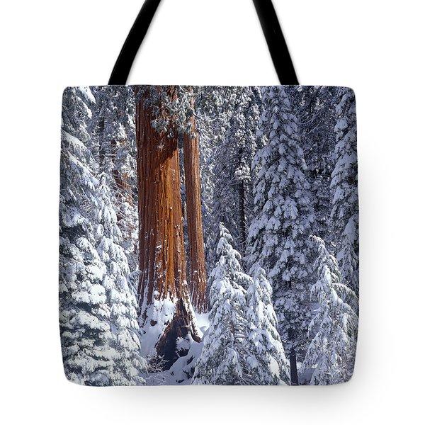 Giant Sequoia Trees Sequoiadendron Tote Bag