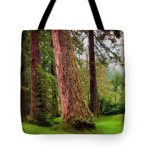 Giant Sequoias. Benmore Botanical Garden. Scotland Tote Bag by Jenny Rainbow