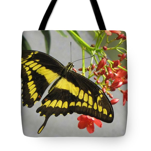 Giant Swallowtail Tote Bag by Jennifer Wheatley Wolf
