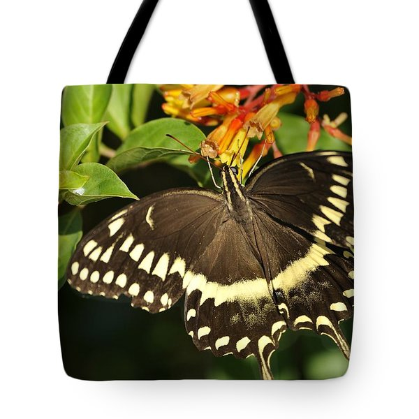 Giant Swallowtail On A Firebush Tote Bag